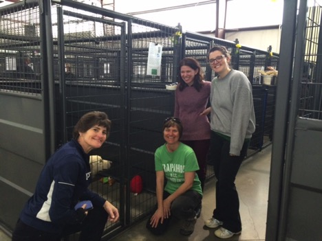 ViTal volunteers at Humane Society (Left to Right) Meridith Tofield, Diana Hornick, Josie Mills and Amanda Johnson