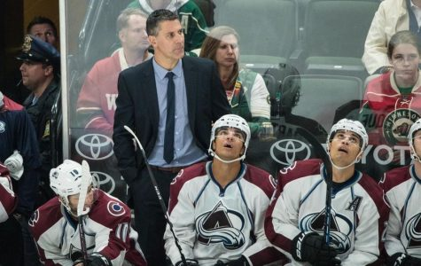 Coach Bednar Disappointed With Av's Season