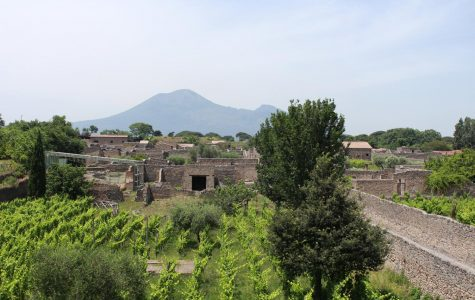 An overlook of the Pompeii ruins.  A vineyard was replanted to mimic what used to be there. Mount Vesuvius is seen in the background. Photo taken on Thursday, June 20, 2019.
