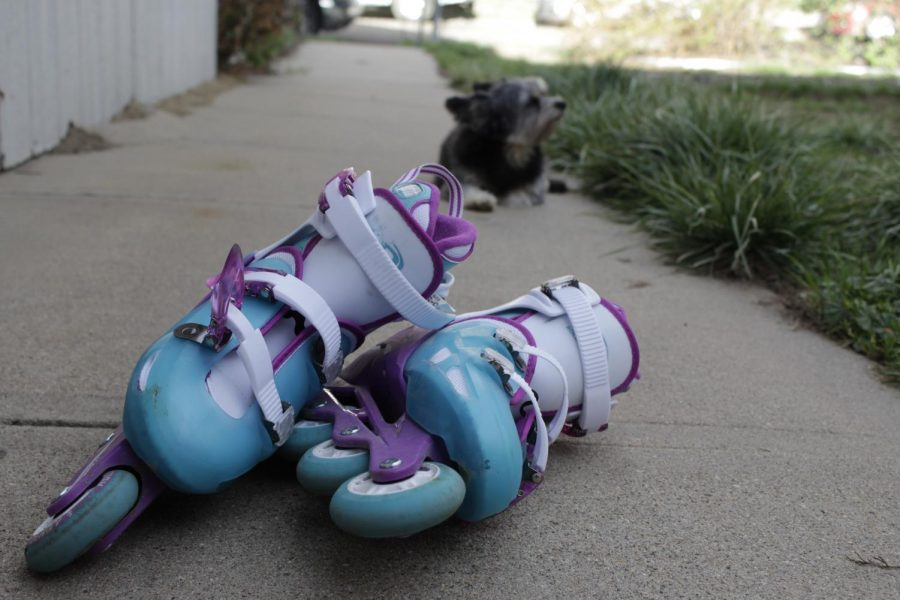 Rollerblading and walking the dog helps keep the mind active.