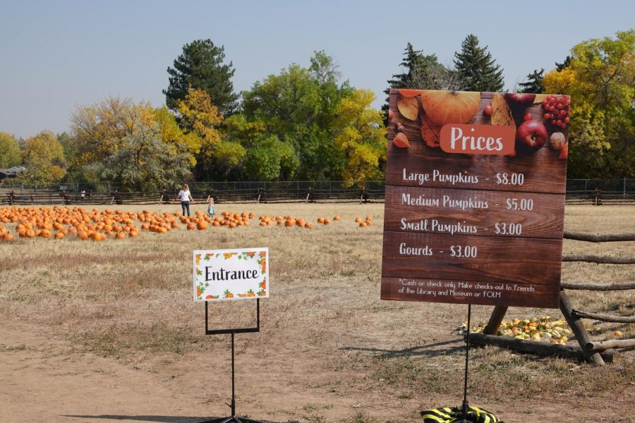 Entrance to the Pumpkin Patch on September 30th.